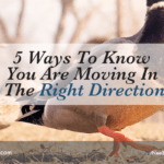 5 Ways To Know You Are Moving In The Right Direction
