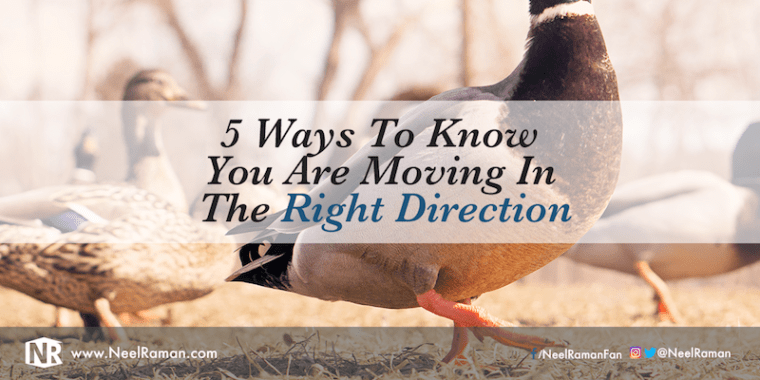 306-5-Ways-To-Know-You-Are-Moving-In-The-Right-Direction